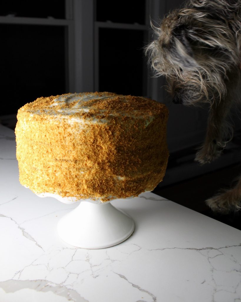 Russian honey cake sitting on a white cake stand, on a white countertop with a cute dog trying to eat it