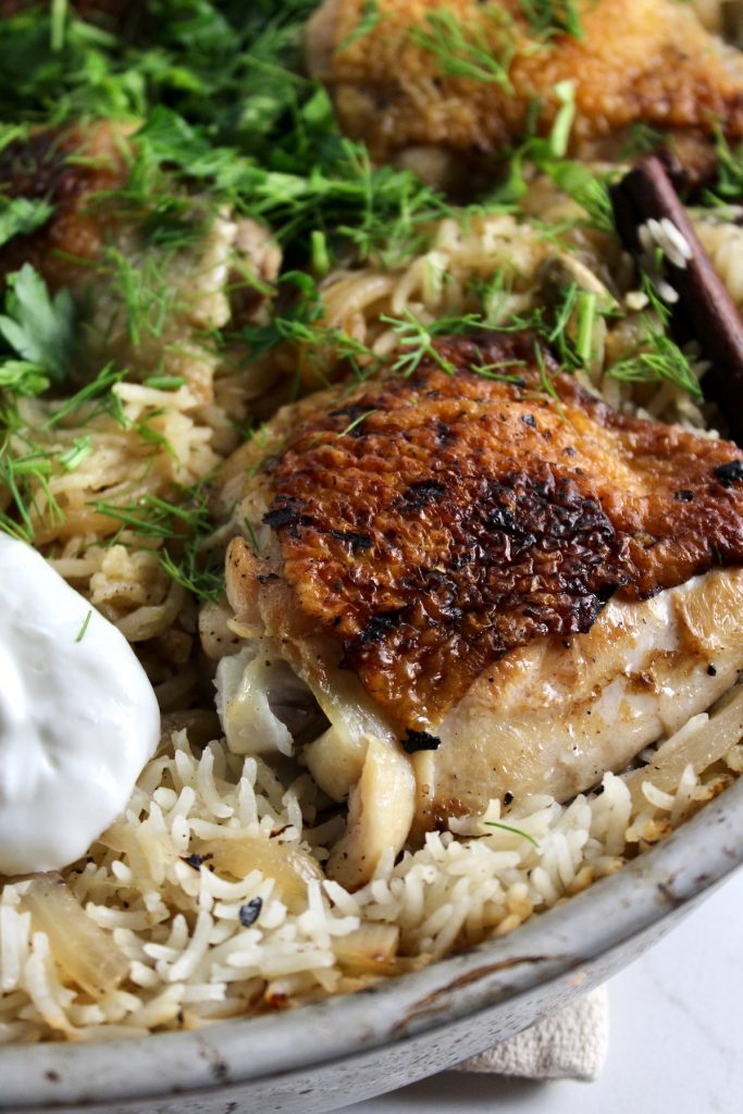 close up of spiced chicken and rice with yogurt